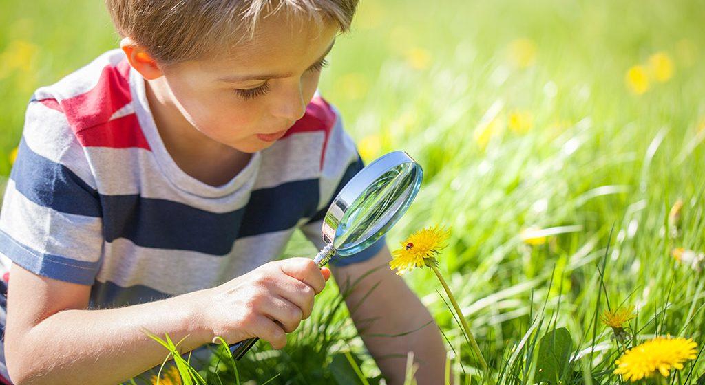 Razvoj predškolaca uzrasta od 4 do 5 godina
